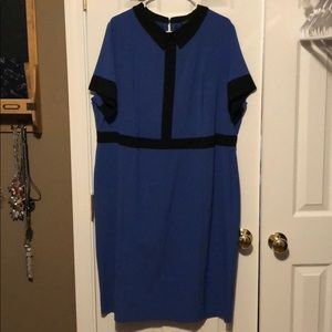 Black and blue color blocked collared dress